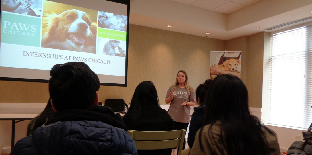 Presentation at PAWS Chicago