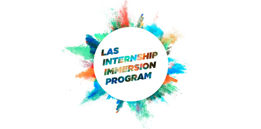 The Internship Imemrsion Program Logo