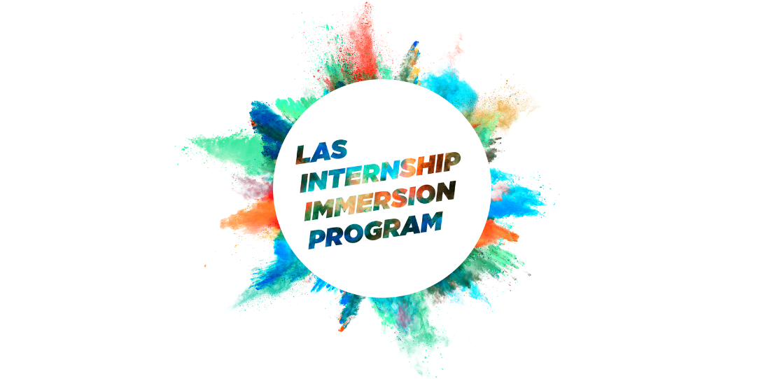 Internship Immersion Program Logo